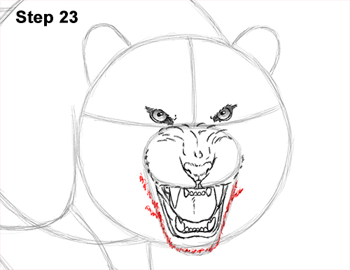 How to Draw a Mean Tiger Roaring Growling Stalking 23