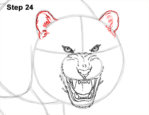 How to Draw a Mean Tiger Roaring Growling Stalking 24