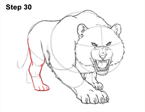 How to Draw a Mean Tiger Roaring Growling Stalking 30