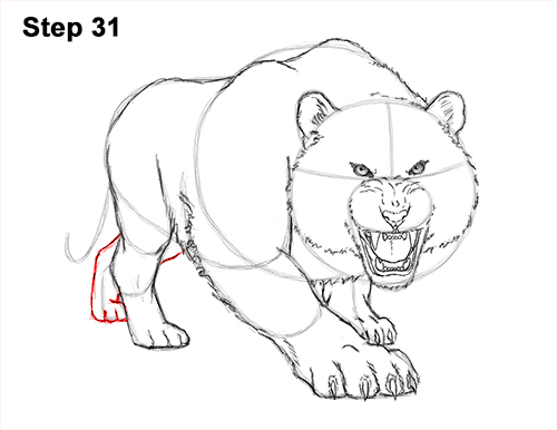 How to Draw a Mean Tiger Roaring Growling Stalking 31
