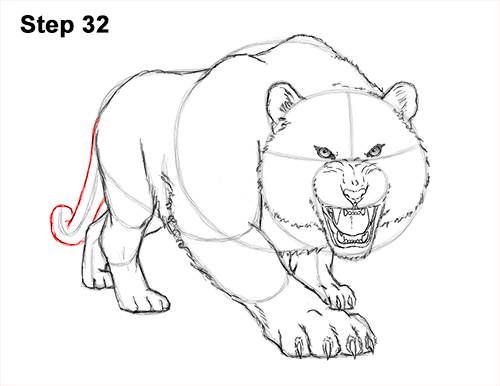 How to Draw a Mean Tiger Roaring Growling Stalking 32