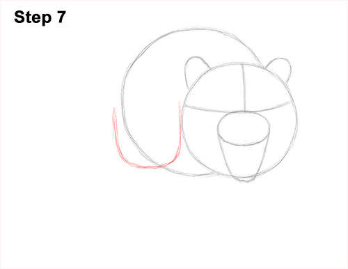 How to Draw a Mean Tiger Roaring Growling Stalking 7