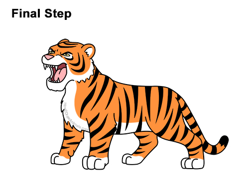 How to Draw Cartoon Tiger Roaring