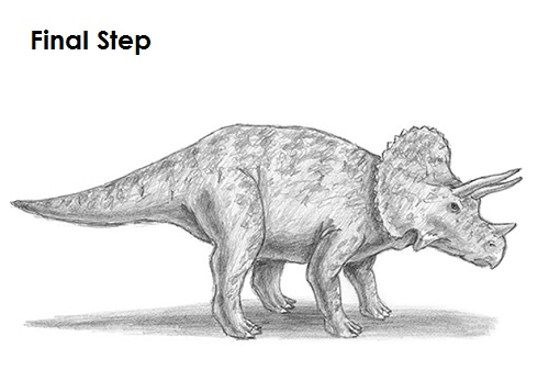Draw Triceratops Final