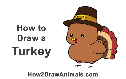 How to Draw a Cute Cartoon Pilgrim Turkey Thanksgiving Chibi Kawaii