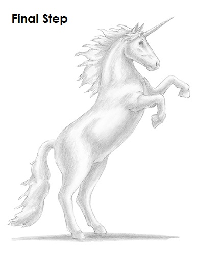 Draw a Unicorn