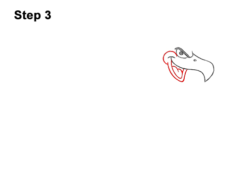 How to Draw a Cool Cartoon Vulture Condor Buzzard 3