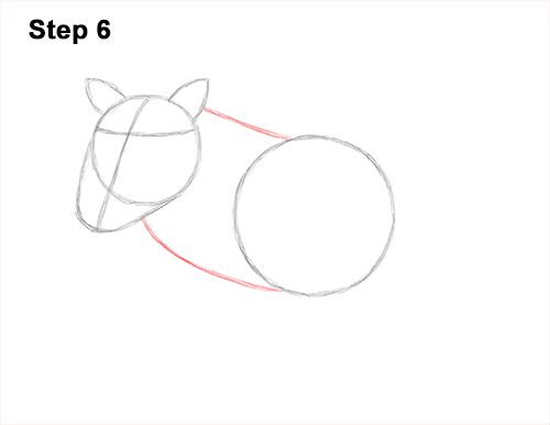 How to Draw a Common Warthog Pig 6