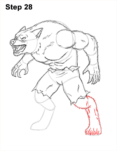 How to Draw Growling Snarling Scary Angry Werewolf 28