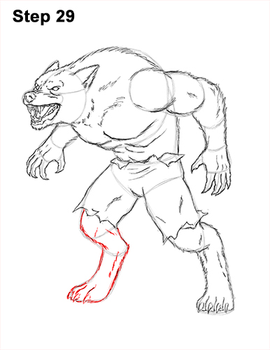 How to Draw Growling Snarling Scary Angry Werewolf 29