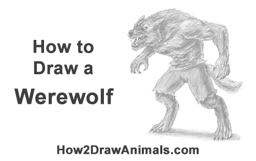 How to Draw Growling Snarling Scary Angry Werewolf