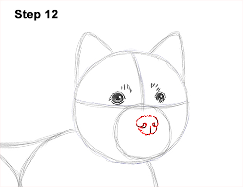 How to Draw a West Highland White Terrier Puppy Dog 12