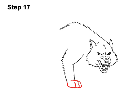 Draw Angry Mean Snarling Cartoon Wolf 17