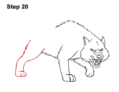 Draw Angry Mean Snarling Cartoon Wolf 20