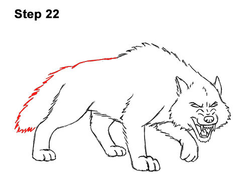 Draw Angry Mean Snarling Cartoon Wolf 22