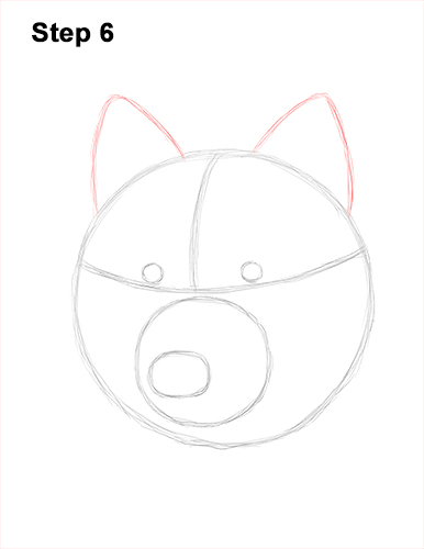 How to Draw Gray Wolf Head Portrait 6