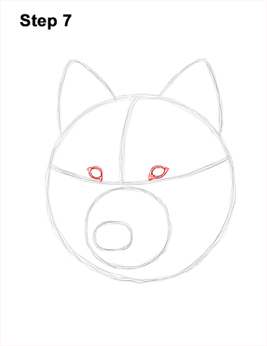 How to Draw Gray Wolf Head Portrait 7