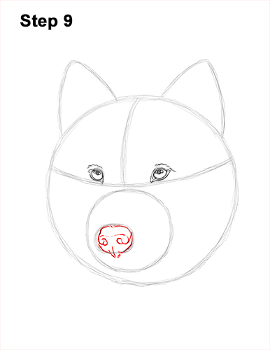 How to Draw Gray Wolf Head Portrait 9