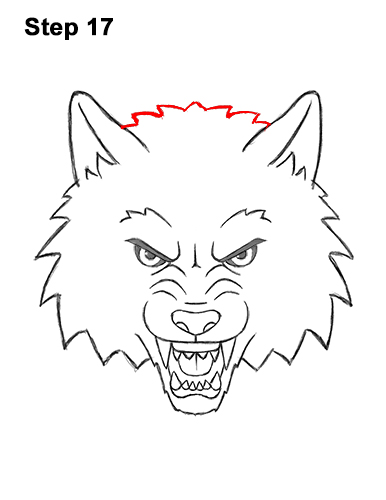 How to Draw Angry Growling Snarling Cartoon Wolf Head 17