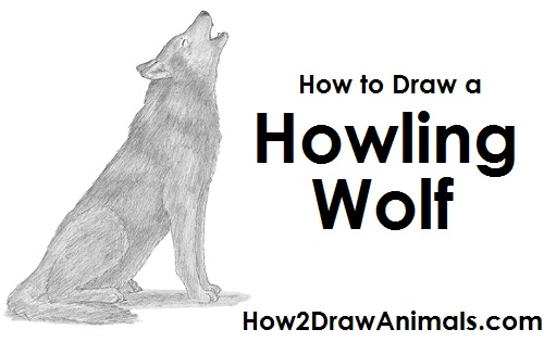 Draw Wolf Howling