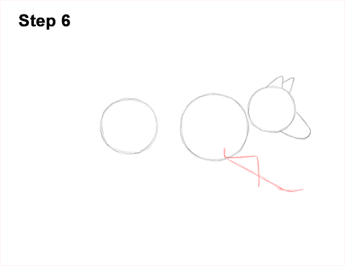 How to Draw a Grey Timber Wolf Running Hunting 6