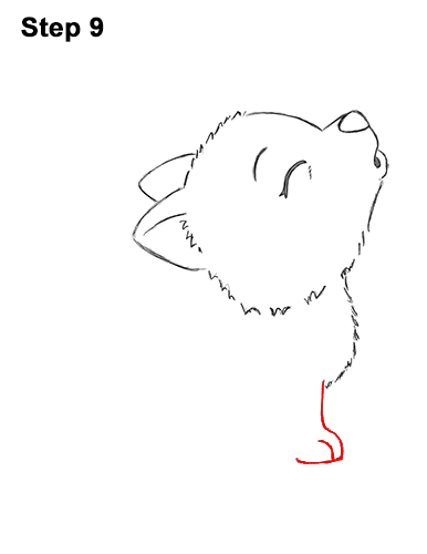 How to Draw Cute Little Cartoon Wolf Pup Cub Howling 9