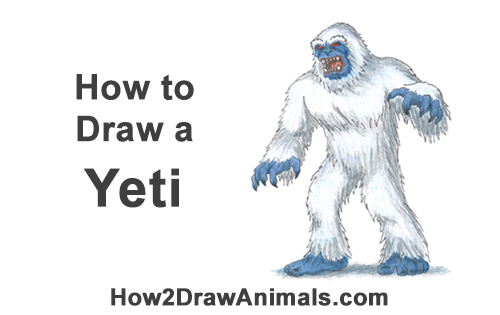 How to Draw a Yeti Abominable Snowman Monster Color
